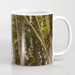 The Tall Trees Coffee Mug