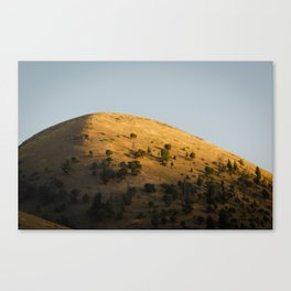 Hill at Sunset, Jackson Wyoming Canvas Print
