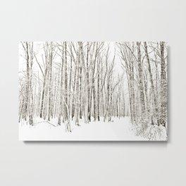 A Winter Walk Through the Woods Metal Print
