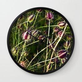LOVE in a Mist - NIGELLA damascena Wall Clock