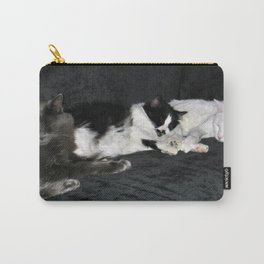 3 cats lounging Carry-All Pouch