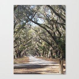 Entering Wormsloe Plantation Canvas Print