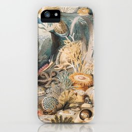 Ocean Life by James M. Sommerville iPhone Case
