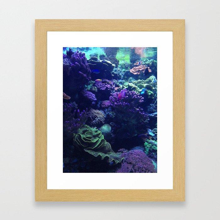 Reef Framed Art Print