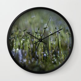 dewy moss sprouts Wall Clock
