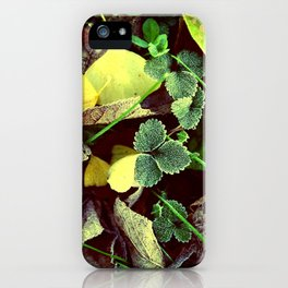 Frosty Leaves and Lawn iPhone Case
