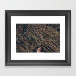 Field and Form II Framed Art Print
