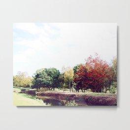 Yorkshire Park Trees Metal Print