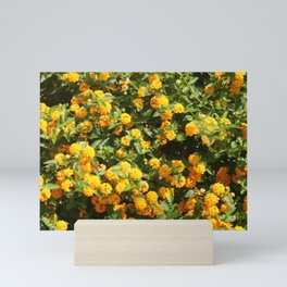Blooming Lantana Plant Mini Art Print