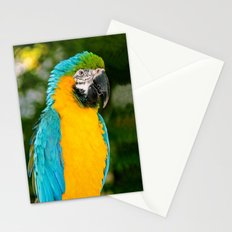 Blue and Gold Macaw Parrot Stationery Cards