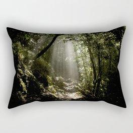 Ray of sun Rectangular Pillow