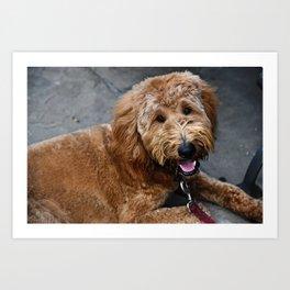 Good Doggo Art Print