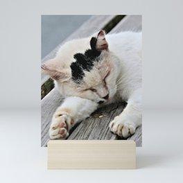 Cat Dreaming Mini Art Print