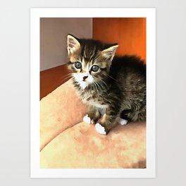 Tabby Cat Named Pipsqueak  Art Print