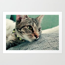 Kitty on Cue Art Print