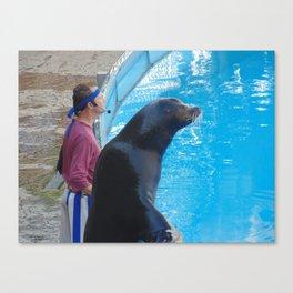 Sea World show 1 Canvas Print