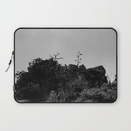 Raven sits on top of Mountain - Big Bend Laptop Sleeve