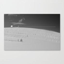 I. Canvas Print