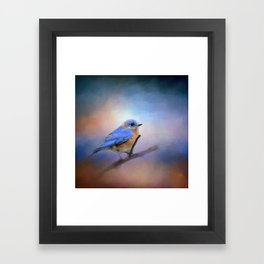 The Happiest Blue - Bluebird Framed Art Print