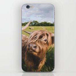 Highland Cows - Blep iPhone Skin