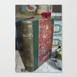For the love of old books Canvas Print