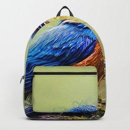 Kingfisher Backpack