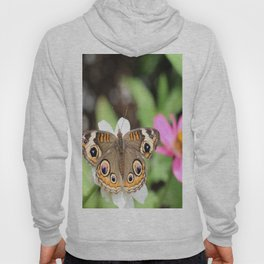 Beautiful Buckeye Butterfly Hoody