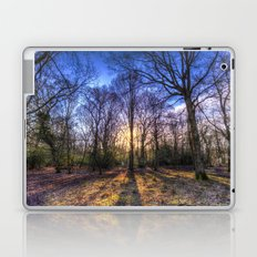 The Morning Sun Forest Laptop & iPad Skin
