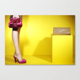 Pink shoes with purse Canvas Print