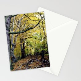 waldalle Stationery Cards
