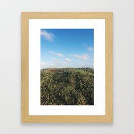 grassy dunes Framed Art Print