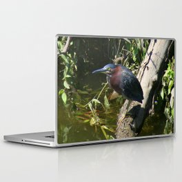 Green Heron Laptop & iPad Skin