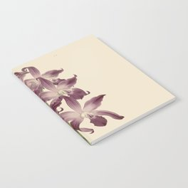 R. Warner & B.S. Williams - The Orchid Album - vol 01 - plate 049 Notebook