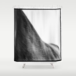Equo 5 Shower Curtain