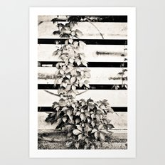 Ivy on Steel Art Print