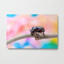 rhinoceros beetle Metal Print