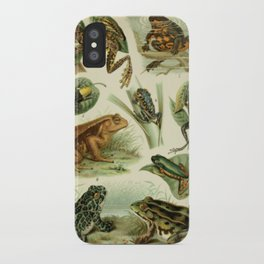 Frogs And Toads iPhone Case