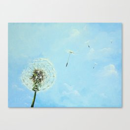 Wishes Canvas Print
