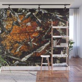 Pyroxene Crystals Wall Mural