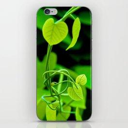 Nature's Twist iPhone Skin