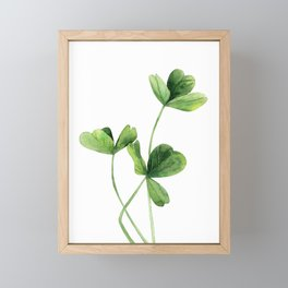Clover Framed Mini Art Print