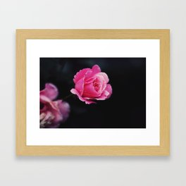 I hate roses Framed Art Print