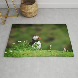 Puffin from Ireland  (RR 238) Rug