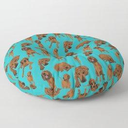 Redbone Coonhound on Turquoise Floor Pillow