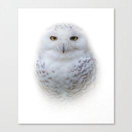 Dreamy Encounter with a Serene Snowy Owl Canvas Print
