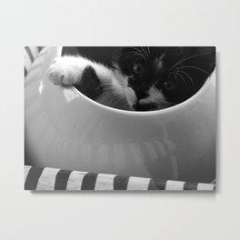 Lulu, la Bouille. Metal Print