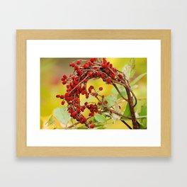 Autumn Berry Framed Art Print