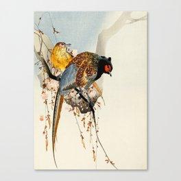 Pheasants on tree - Japanese woodblock print Canvas Print