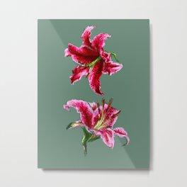 twin lilies Metal Print