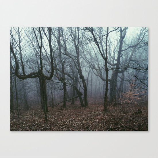 Foggy Max Patch Woods Canvas Print